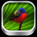 3D Bird Songs mobile app icon