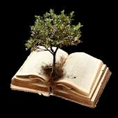 Scripture Mastery App (Por)