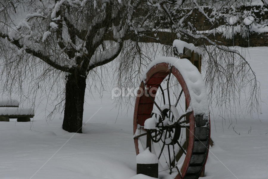 Frozen Water Wheel by Donald Lancaster - Artistic Objects Still Life (  )