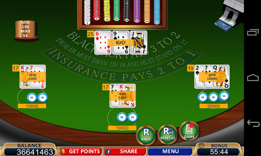 Blackjack 21+ Casino Card Game  2