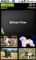 Screenshot of World Dogs Quiz