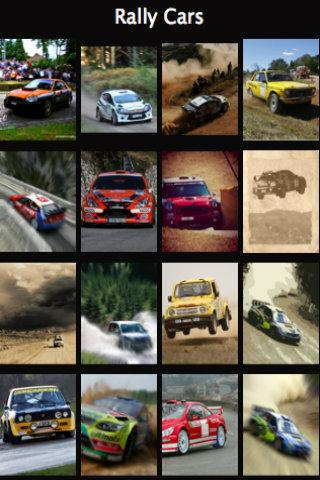 Puzzle Rally