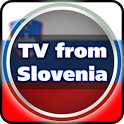 TV from Slovenia icon