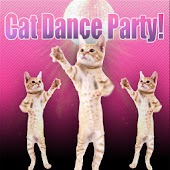 Cat Dance Party