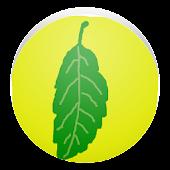 シンプル木の葉図鑑