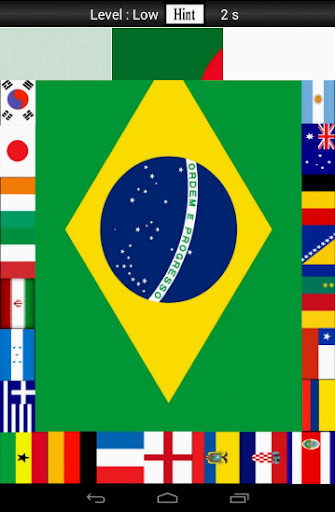Flagz World Cup 2014 Puzzle