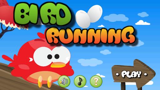 Bird Running
