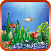Goldfish Free Live Wallpaper