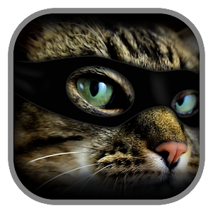 Find 3 Cats for PC and MAC