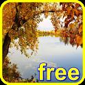 autumn river live wallpaper icon