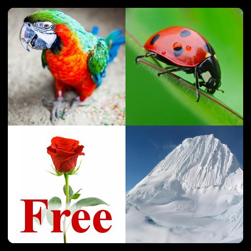 教育のLearn English Words Free LOGO-記事Game
