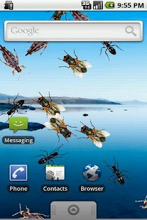 Live Wallpaper Creepy Crawlies - screenshot thumbnail