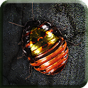 Roach Rage HD Free icon