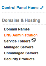 DNS Administration link