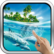 App Magic Touch: Dolphins APK for Windows Phone