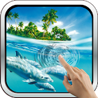 Magic Touch: Dolphins icon