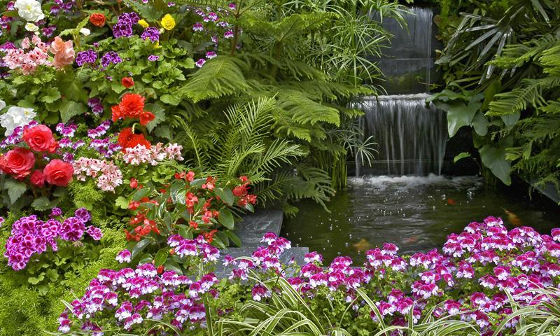 Beautiful Flower Gardens Waterfalls Fukrg Garden Ideas Screenshot
