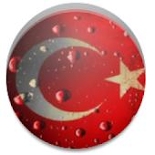 Turkish English (Audio)