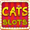 Cats Slots Casino Vegas Free icon