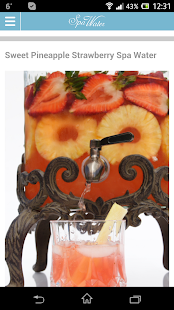 MySpaWater Recipes - screenshot thumbnail