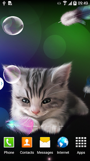 Sleepy Kitten Wallpaper Lite
