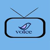 Viet Voice Media