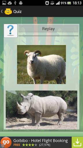 【免費娛樂App】Animal Bird Sounds Jigsaw quiz-APP點子