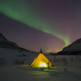 Camping under Aurora by Geir Hammer - Landscapes Starscapes ( skiing, mountain, northern lights, snow, aurora, aurora borealis, tent, north, light, norway )