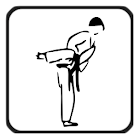Karate Glossary icon
