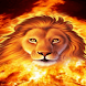 Fire Lion Live Wallpaper
