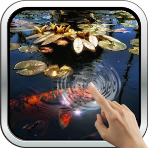 Koi fish in the pond android apps on google play for Koi pond app
