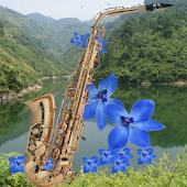 100 Saxophone Music 萨克斯100首