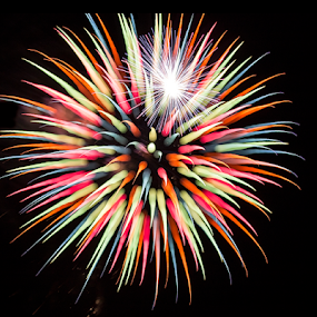 Jester by Pat Eisenberger - Abstract Fire & Fireworks ( excitement, holiday, color, jester, explosion, fireworks,  )