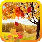 Autumn Photo live wallpaper icon