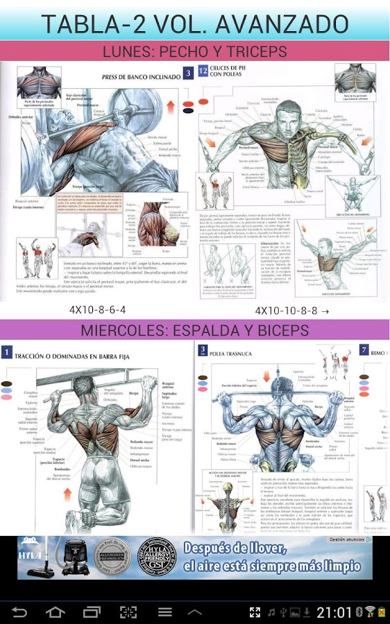 Gym Sport -ejercicios gimnasio - screenshot