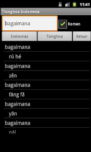 Chinese Indonesian Dictionary screenshot 2