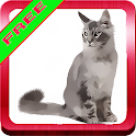 Cats Sweet Sounds icon