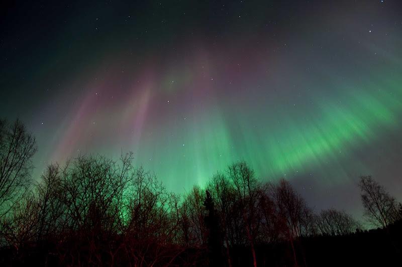 An aurora borealis over Anchorage, Alaska.