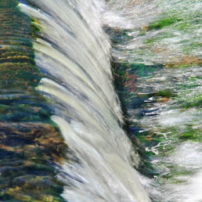 by Angela Wescovich - Nature Up Close Water (  )