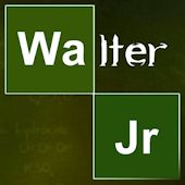 Breaking Bad: Walter White Jr.