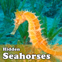 Hidden Object Games-Seahorses icon