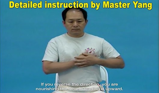 Qigong Massage: Self Massage- screenshot thumbnail