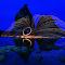 CYMERA_20140224_190224.jpg