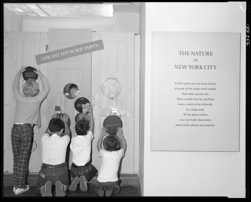 A Vacant Lot is Not Empty, exhibit, the Nature of New York City Exhibit, Natural Science Center