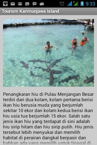 Karimunjawa Tourism Indonesia