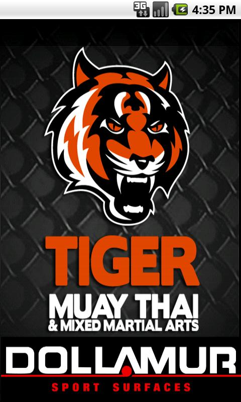 Tiger Muay Thai - screenshot