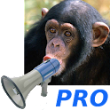 Zoo Sound Board Pro icon