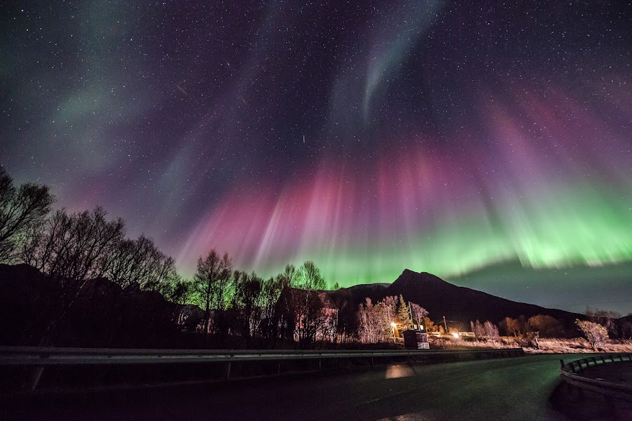 Aurora red by Benny Høynes - Landscapes Starscapes ( water, colourful, northern lights, aurora borealis, norway )