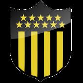 Ball 3D Atlético Peñarol LWP