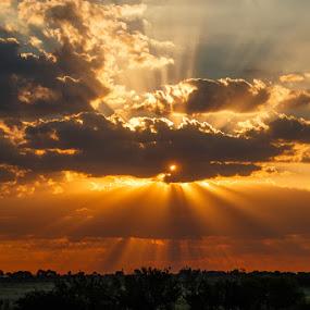 Extravegance by Hans-Erik Arp - Landscapes Sunsets & Sunrises ( clouds, god rays, sunset, cloudscape, sunlight, crepuscular rays, golden, colours,  )